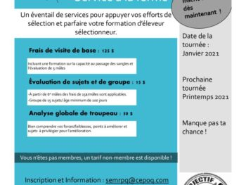 thumbnail of offre de service classification automne 2020